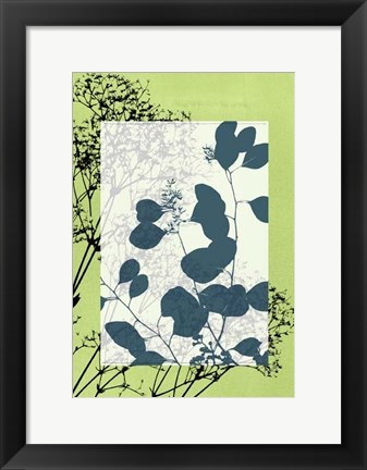 Framed Sm Translucent Wildflowers VIII Print