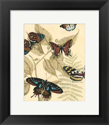 Framed Sm. Graphic Butterflies II (P) Print
