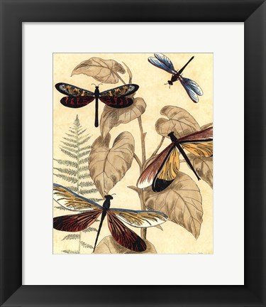 Framed Sm. Graphic Dragonflies II (P) Print