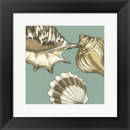 Framed Small Shell Trio on Blue III (P) Print