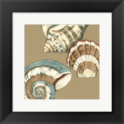 Framed Small Shell Trio on Khaki II (P) Print