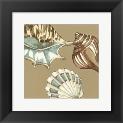 Framed Small Shell Trio on Khaki III (P) Print