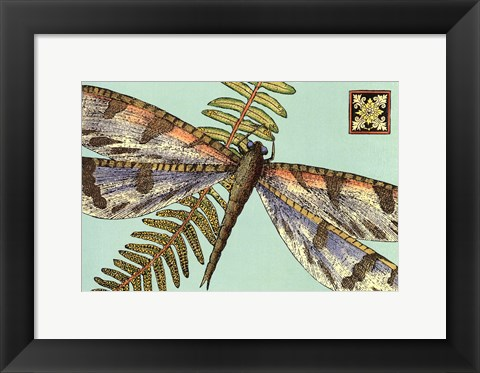 Framed Dragonfly on Aqua I Print