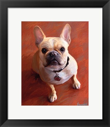 Framed Sophie French Bulldog Print