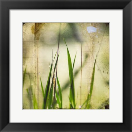 Framed Green II Print