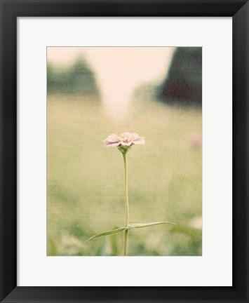 Framed Flower Portrait II Print
