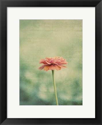 Framed Flower Portrait III Print