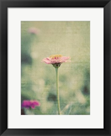 Framed Flower Portrait IV Print