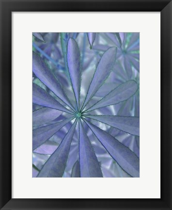 Framed Woodland Plants in Blue II Print