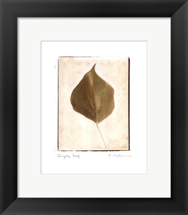 Framed Single Leaf Print