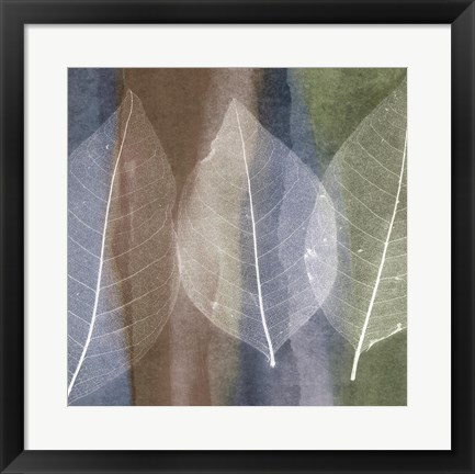 Framed Leaf Structure II Print