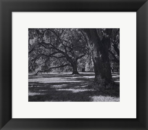 Framed Broadfield I Print