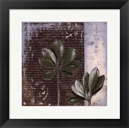 Framed Botanica on Blue II Print