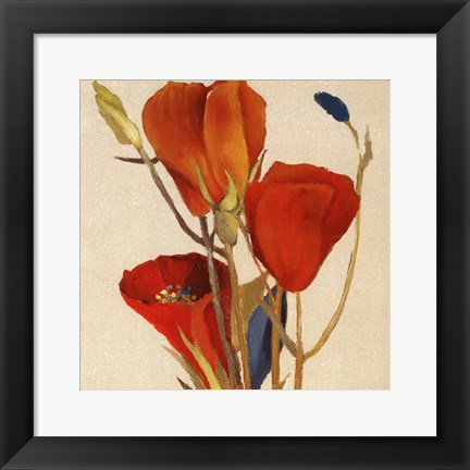 Framed Red Grandiflorum II (close up) Print