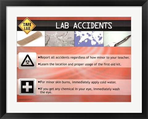 Framed Lab Accidents Print
