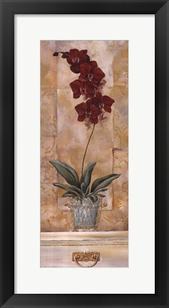 Framed Orchid Panel II Print