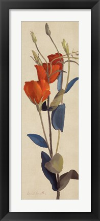 Framed Red Graldiflorum I Print