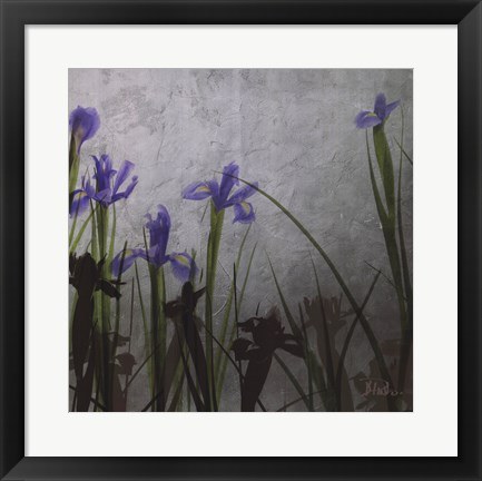 Framed Blue Irises II Print