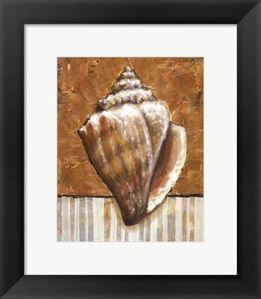 Framed Vintage Shell II - mini Print