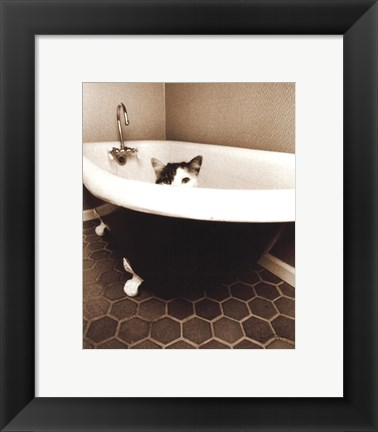 Framed Kitty III Print