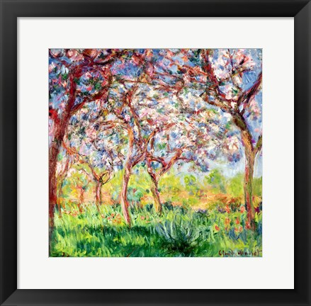 Framed Printemps a Giverny, 1903 Print