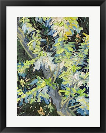 Framed Acacia in Flowe Print