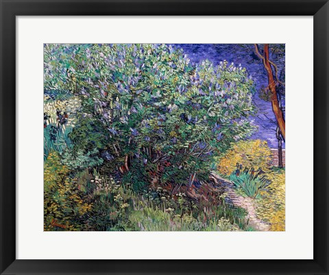 Framed Lilac Bush, 1889 Print