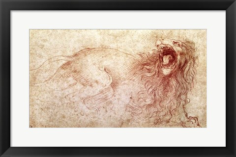 Framed Sketch of a roaring lion Print