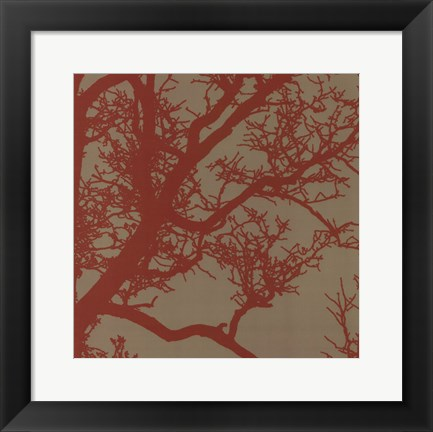 Framed Cinnamon Tree IV Print