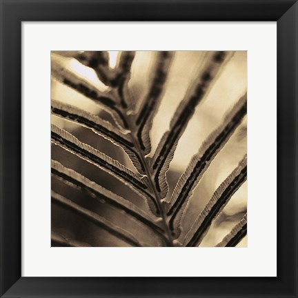 Framed Abstraction Print
