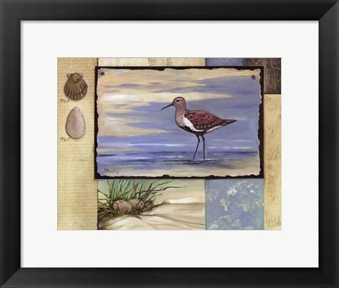 Framed Sandpiper Collage II mini Print