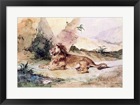 Framed Lion in the Desert, 1834 Print