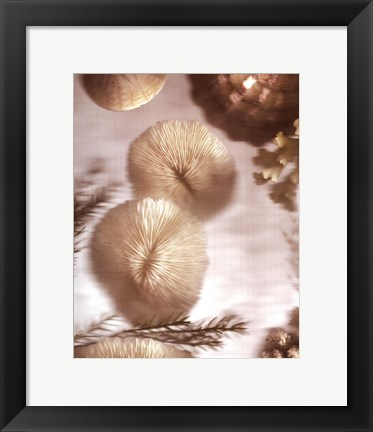 Framed Nautical Illuminations No.2 Print