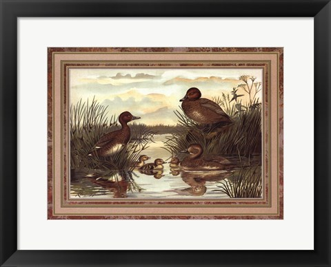 Framed Anonymous - Ducks Print