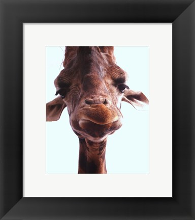 Framed Giraffe Face Print