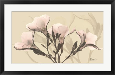 Framed Misty Reflection Oleander Print