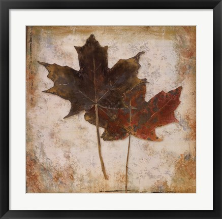 Framed Natural Leaves IV Print