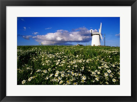 Framed Ballycopeland Windmill, Millisle, Northern Ireland Print
