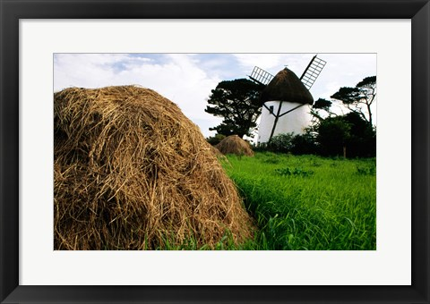 Framed Traditional windmill in a field, Tacumshane Windmill, Ireland Print