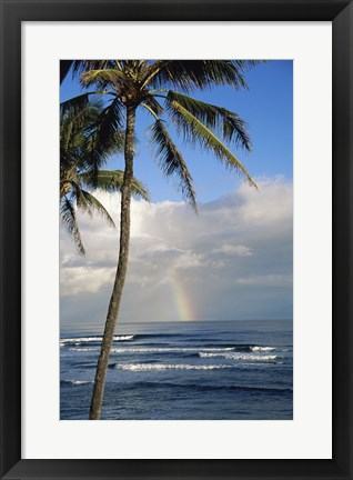 Framed Kauai Hawaii - Palm Tree Print