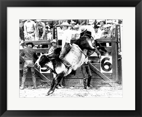 Framed Side profile of a cowboy riding a bull at a rodeo Print