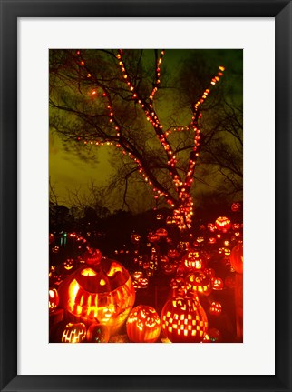 Framed Jack o' lanterns lit up at night, Roger Williams Park Zoo, Providence, Rhode Island, USA Print