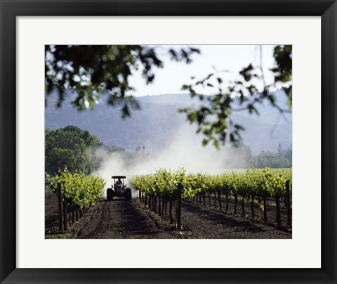Framed Tractor in a field, Napa Valley, California, USA Print