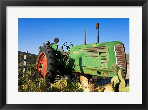 Framed Abandoned tractor in a field, Temecula, Wine Country, California, USA Print