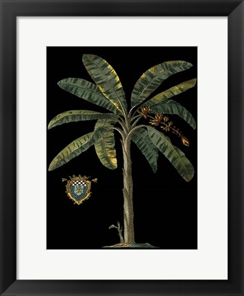 Framed Palm & Crest on Black II Print