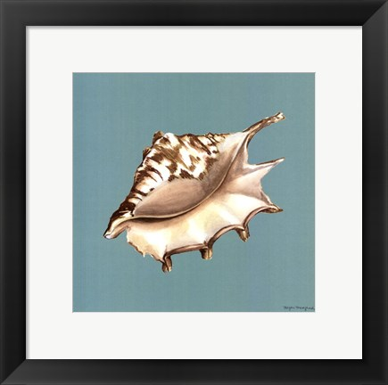 Framed Shell on Aqua IV Print