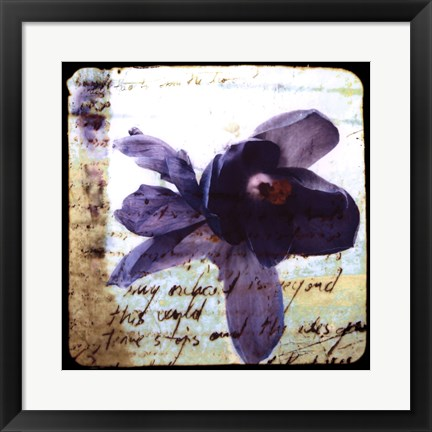 Framed Blooming Purple II Print