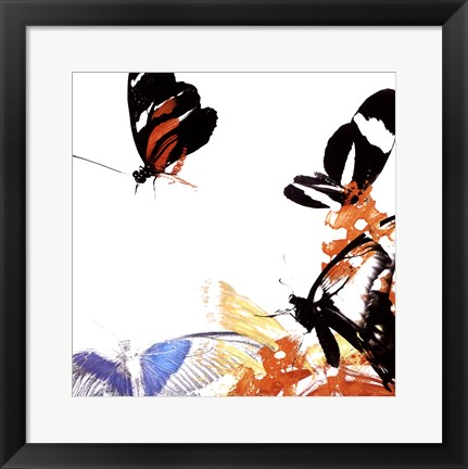 Framed Butterfly Infloresence IV Print