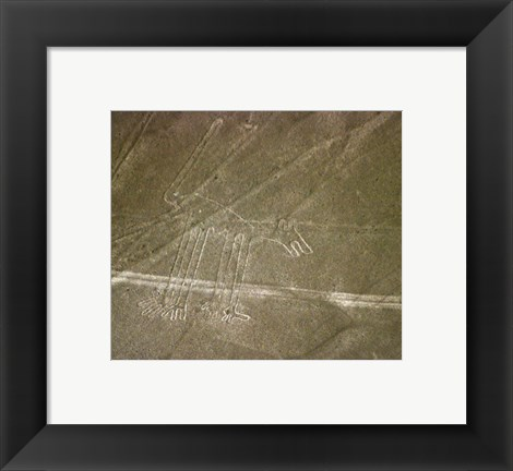 Framed Nazca Lines Dog Print