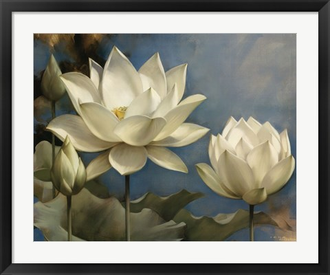 Framed Lotus I Print